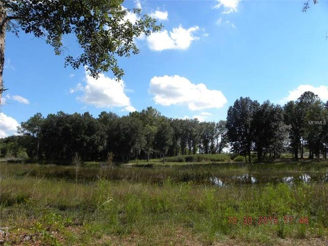 7400 Pretty Lake Rd, Clermont, FL 34714