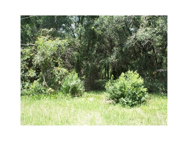 00000 Dogwood Dr, Fruitland Park, FL 34731