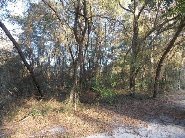 SW 48th Path, Bushnell, FL 33513