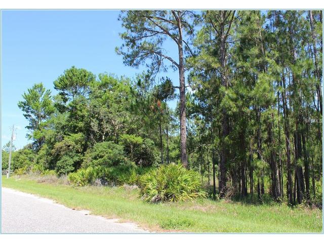 Saffron Avenue, Eustis, FL 32736