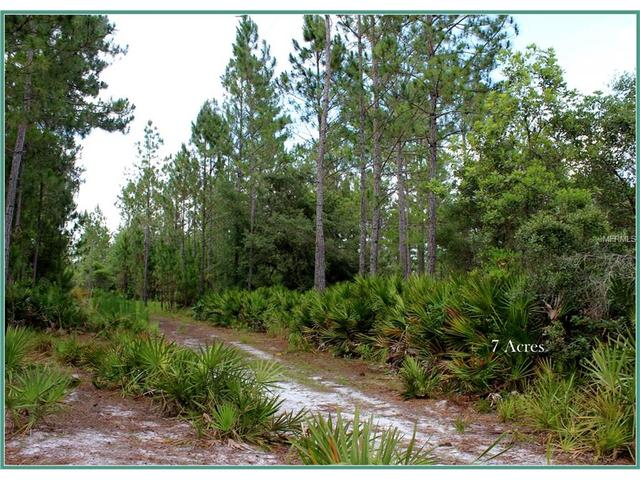 Wild Acres Trl, Paisley, FL 32767
