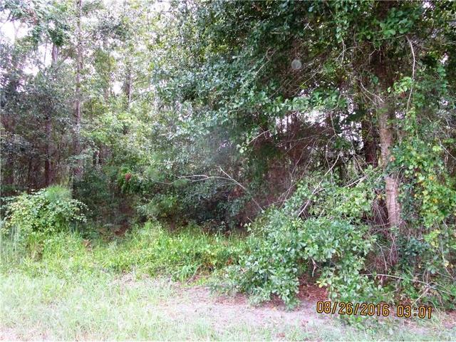 14116 Carter Island Rd, Groveland, FL 34736