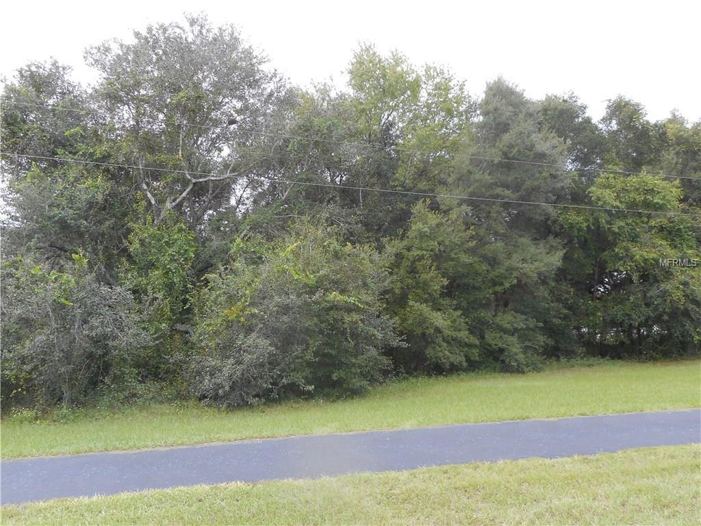 0 Dulgar Road, Lady Lake, FL 32159