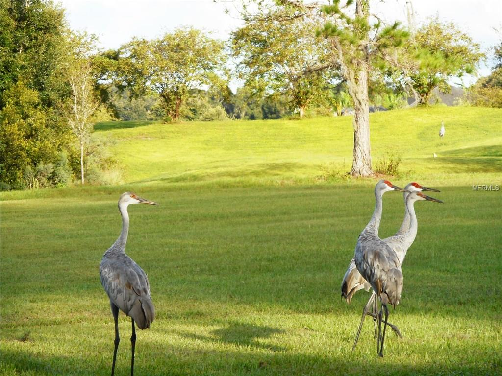 547 Dowling Circle, Lady Lake, FL 32159