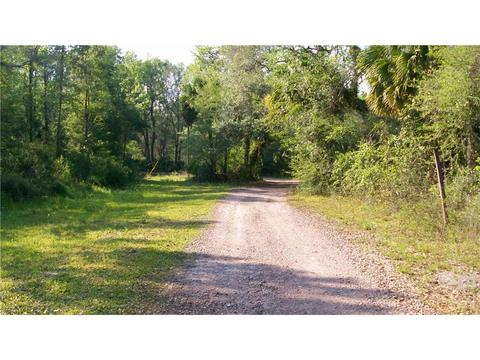 6881 County Road 330, Bushnell, FL 33513