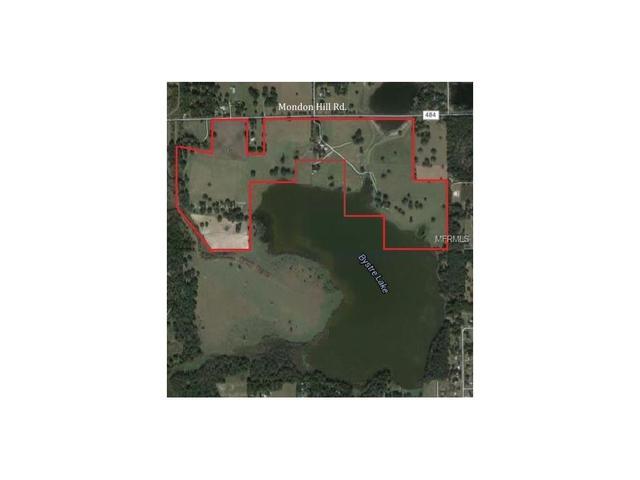 24400 Mondon Hill Rd, Brooksville, FL 34601