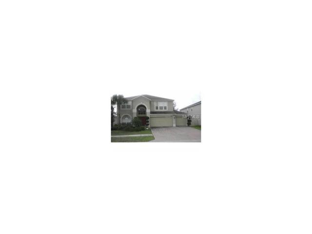 29810 Cedar Waxwing Dr, Wesley Chapel, FL 33545