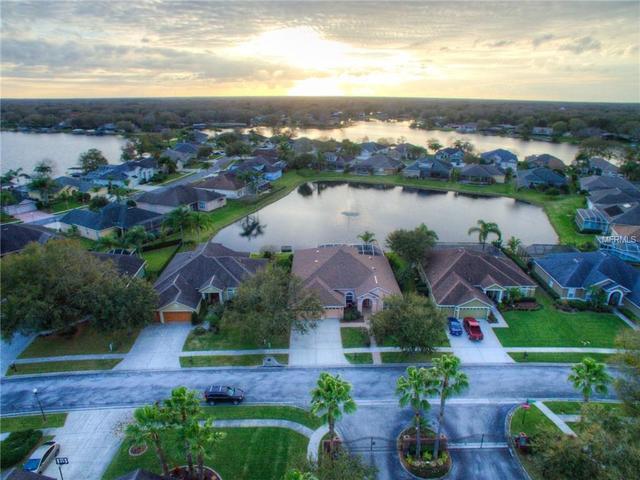 22840 Collridge Dr, Land O Lakes, FL