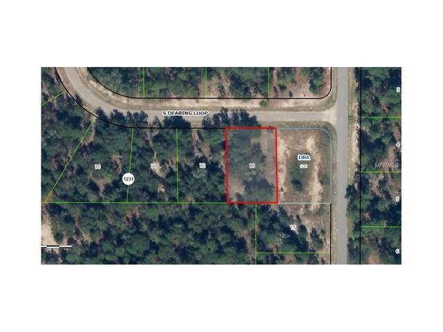 9614 N Dearing Loop, Citrus Springs, FL 34434