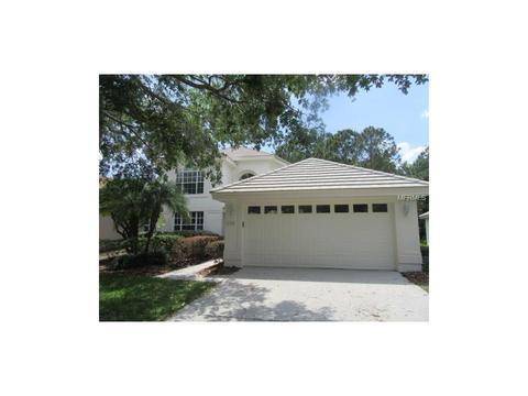 17704 Nathans Dr, Tampa, FL 33647