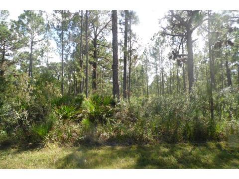 1009 Calliandra Dr, Indian Lake Estates, FL 33855