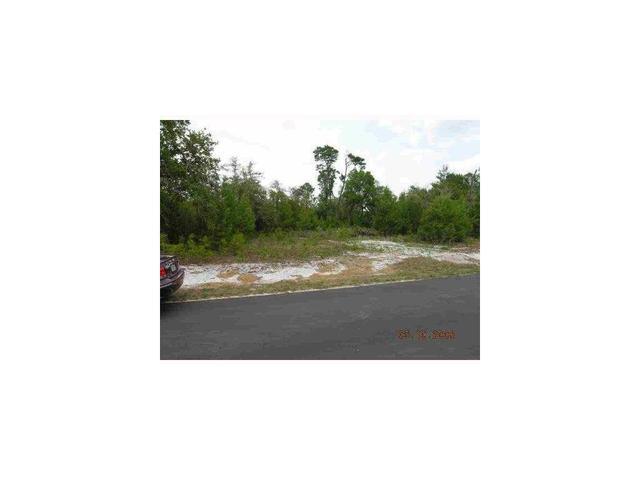 Bear Street NW Corner Of Azalea Ave, Paisley, FL 32767