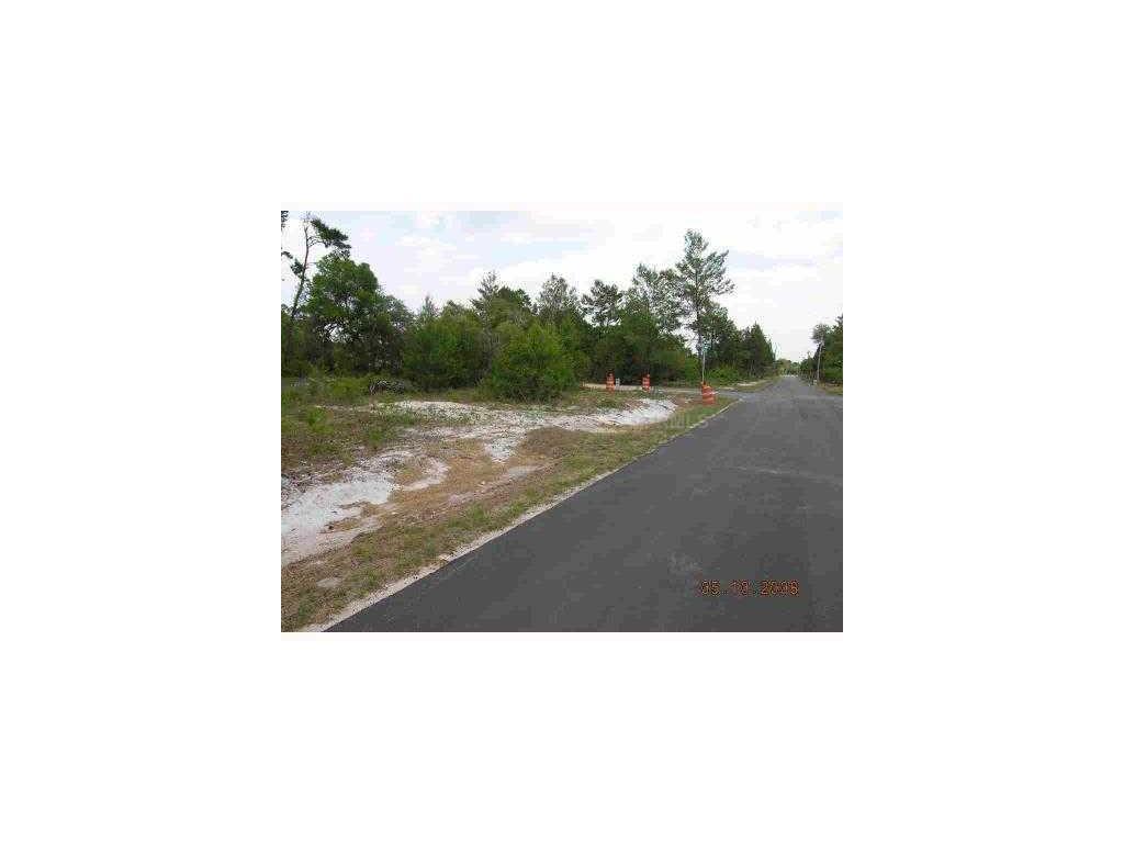 Bear Street NW Corner Of Azalea Avenue, Paisley, FL 32767