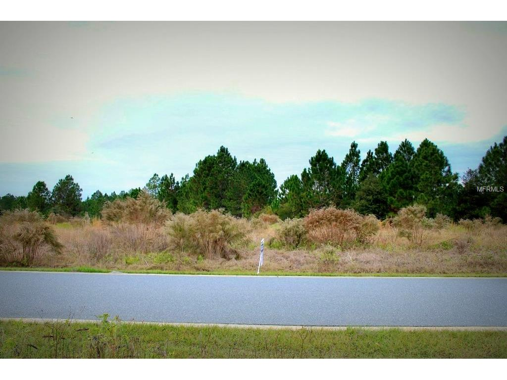 428 Long And Winding Road, Groveland, FL 34736