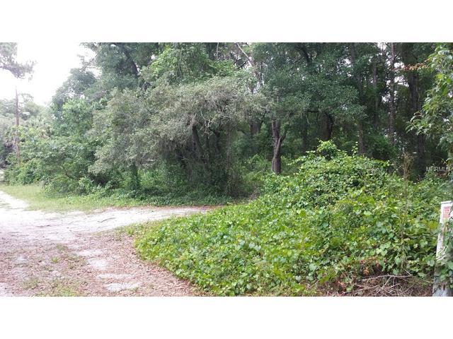0 Terrell Rd, Mount Dora, FL 32757