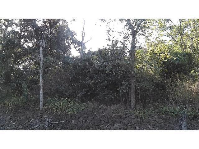 1624 Beulah Rd, Winter Garden, FL 34787