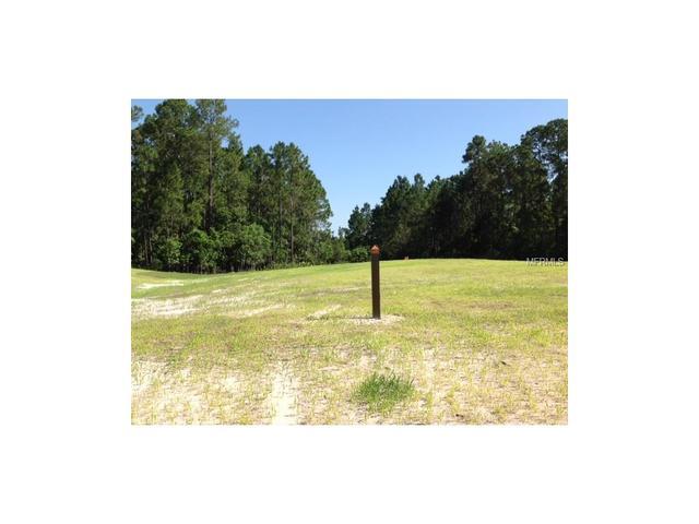 10167 Mattraw Pl, Golden Oak, FL 32836