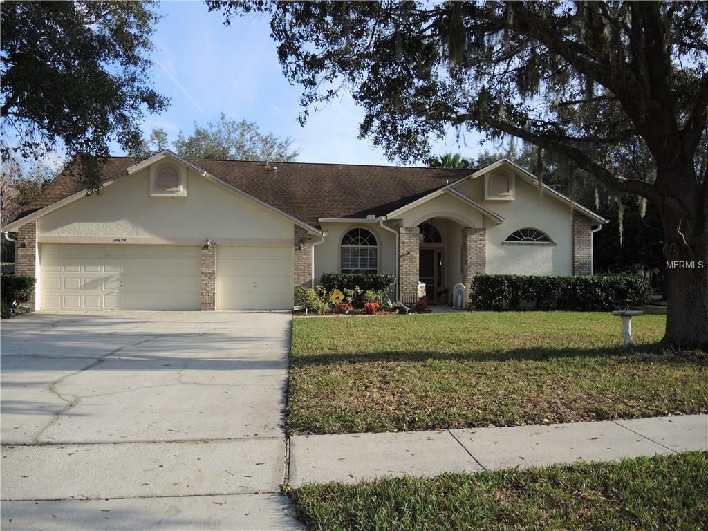 10628 Spring Buck Trl, Orlando, FL