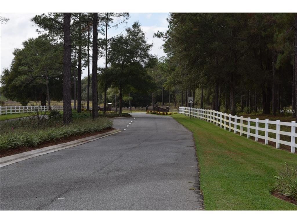 Clearwater Way, Groveland, FL 34736
