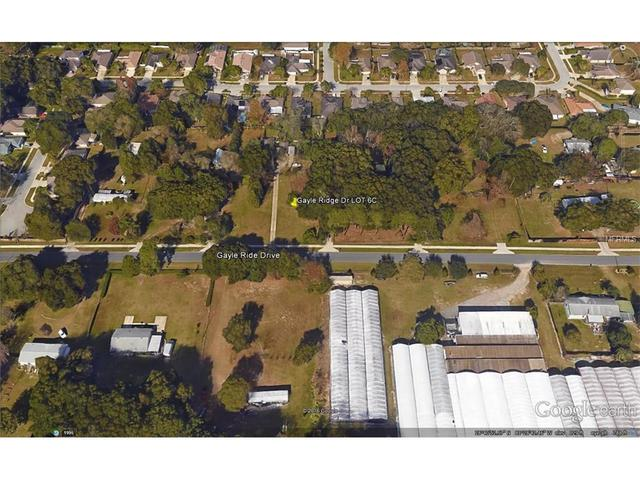Gayle Ridge Drive, Apopka, FL 32703