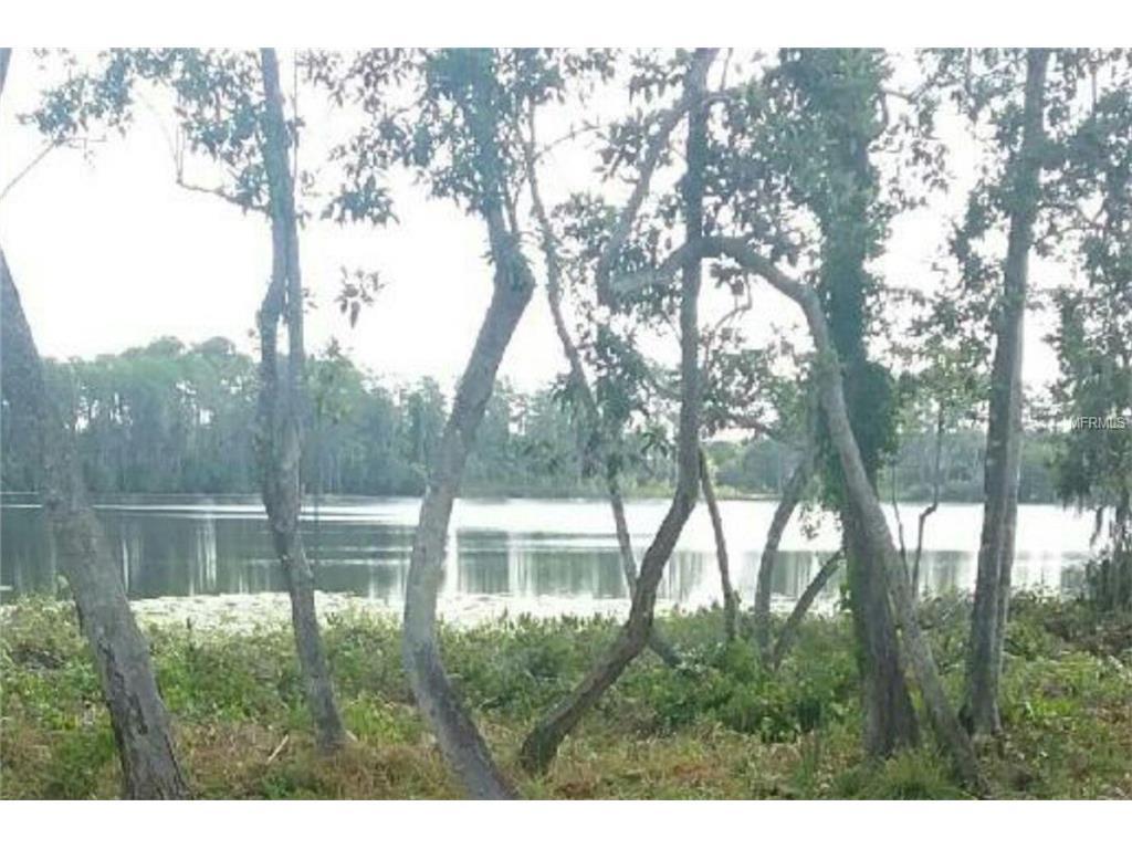 10119 Canopy Tree Court, Orlando, FL 32836