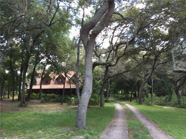 17641 Seidner Rd, Winter Garden, FL 34787