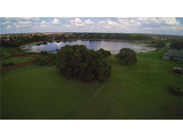 11544 Willow Gardens Dr, Windermere, FL 34786