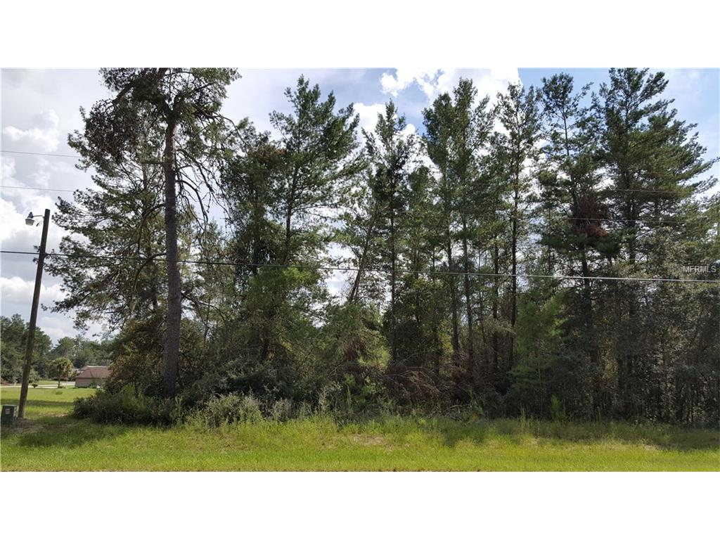 0 SW 177 Lane Road, Ocala, FL 34478