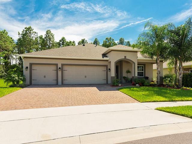 15414 Sandfield Loop, Winter Garden, FL 34787