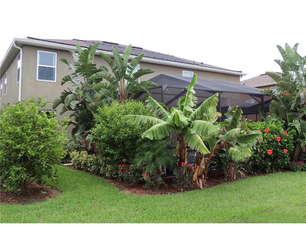 7750 summerlake pointe blvd winter garden fl for sale mls