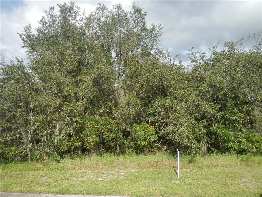 1036 Old Cutler Road, Lake Wales, FL 33898