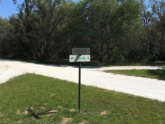 Tiger Creek Trail, Lake Wales, FL 33898