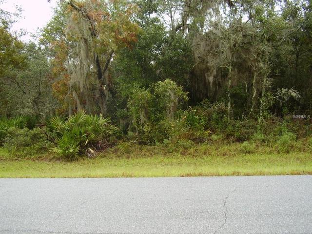 1603 Pickerel Ct, Kissimmee, FL 34759