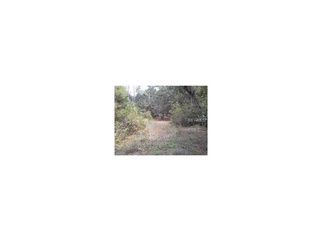 South Orange Blossom Trail Kissimmee, Kissimmee, FL 34746