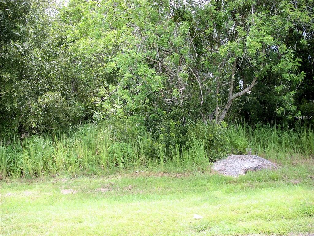 507 Delido Way, Kissimmee, FL 34758