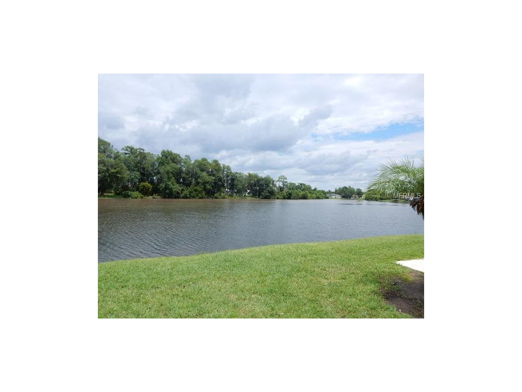 9 W Country Cove Way, Kissimmee, FL 34743