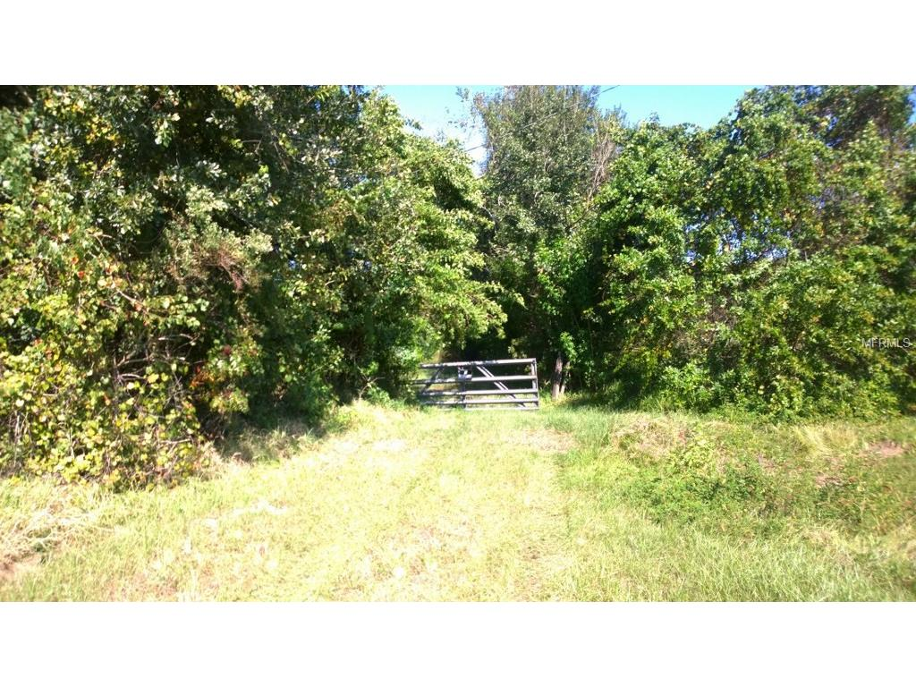 1290 Cinder Lane, Kissimmee, FL 34744