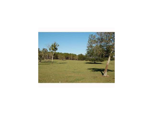 Frazee Hill Lot B, Dade City, FL 33523