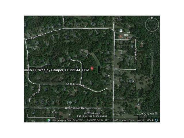 Pimlico Place, Wesley Chapel, FL 33544