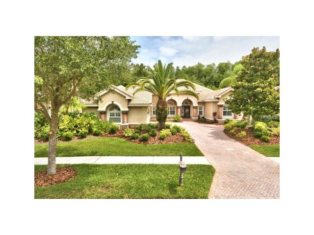 11825 Shire Wycliffe Ct Tampa, FL 33626