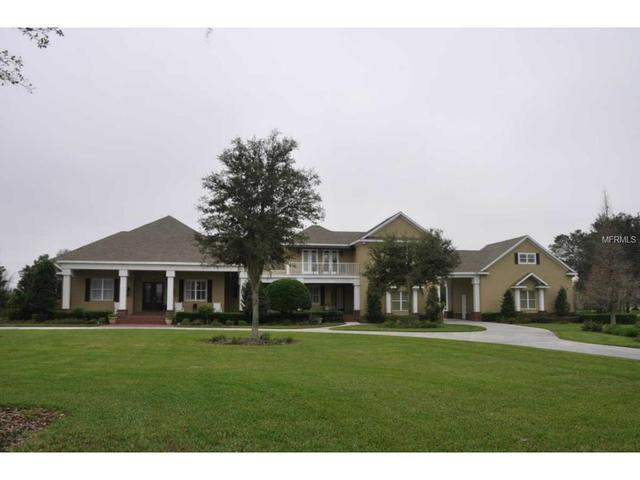 11441 Hammock Oaks Ct, Lithia, FL