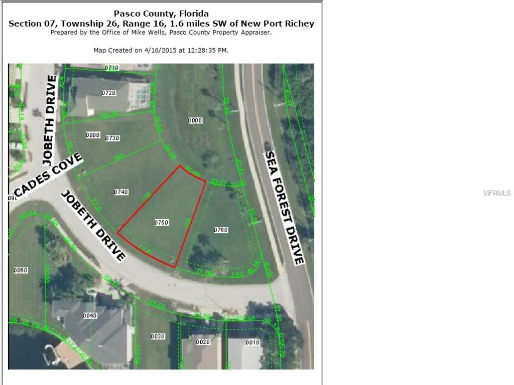 Jobeth Drive, New Port Richey, FL 34652