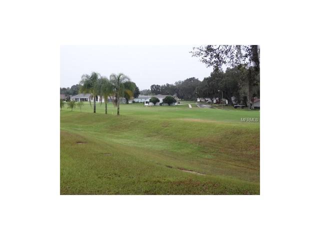 6951 Stephens Path, Zephyrhills, FL 33542