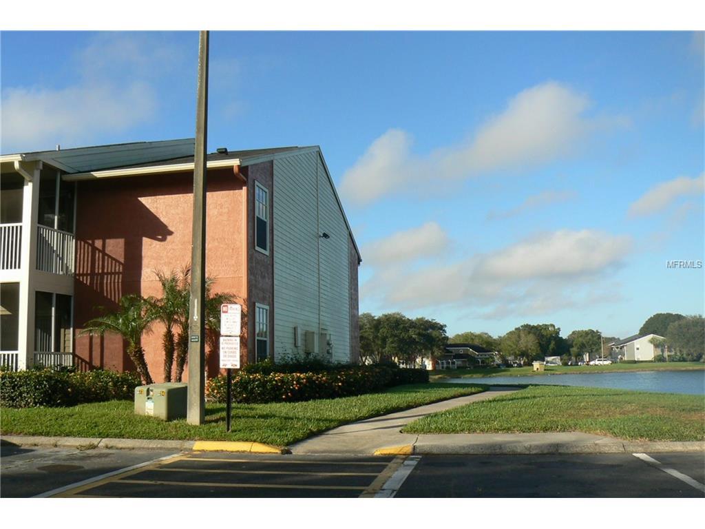 314 Lake Parsons Grn #APT 104, Brandon, FL