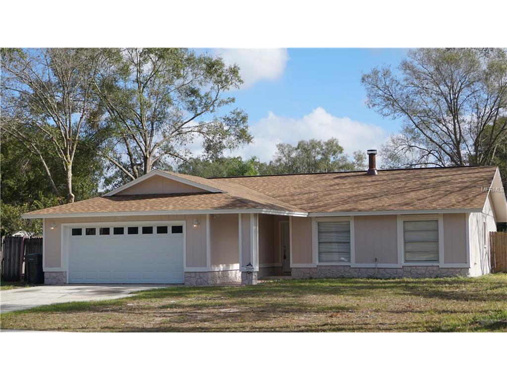 14101 Davenport Pl, Tampa, FL