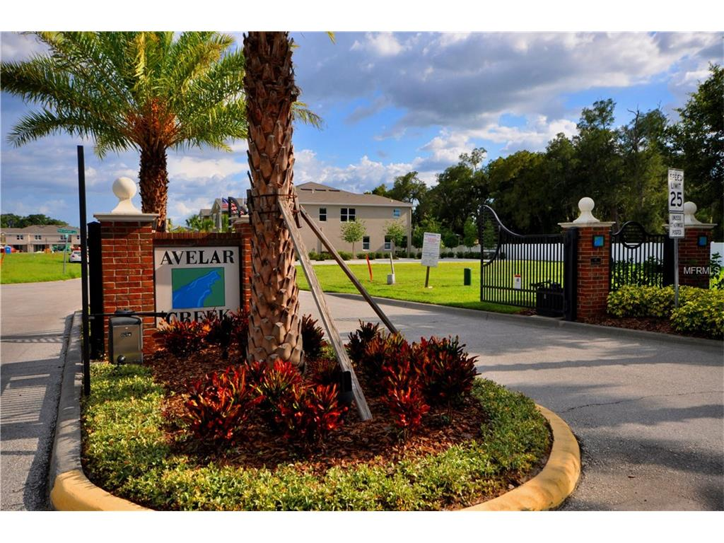 10414 Red Carpet Court, Riverview, FL 33578