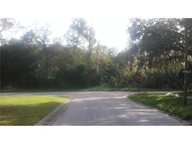 Tralee Dr, Riverview, FL 33569