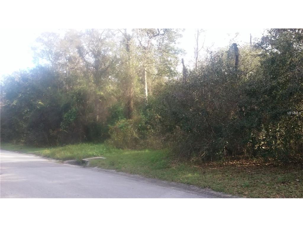 Tralee Drive, Riverview, FL 33569