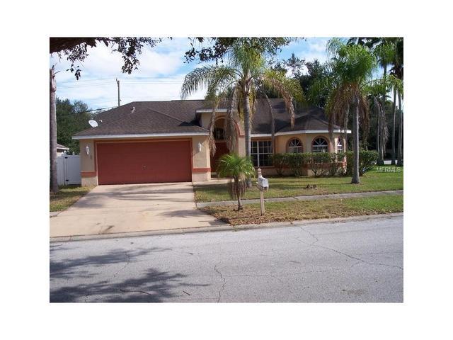 4201 Amber Ridge Ln, Valrico FL 33594