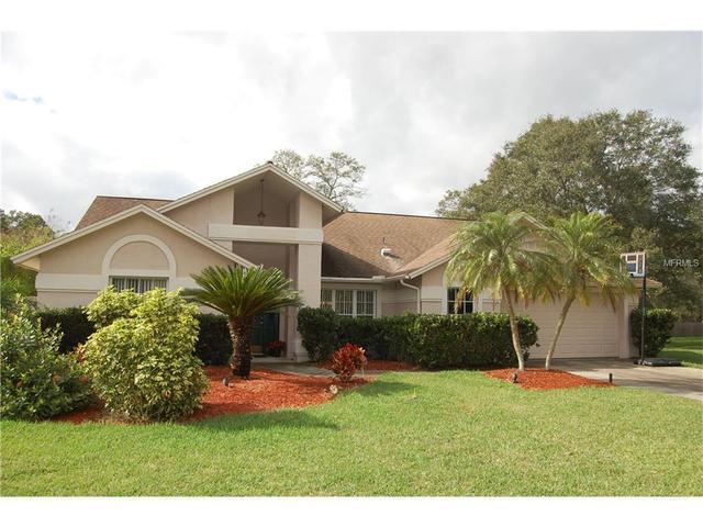2736 Buckhorn Oaks Dr, Valrico FL 33594